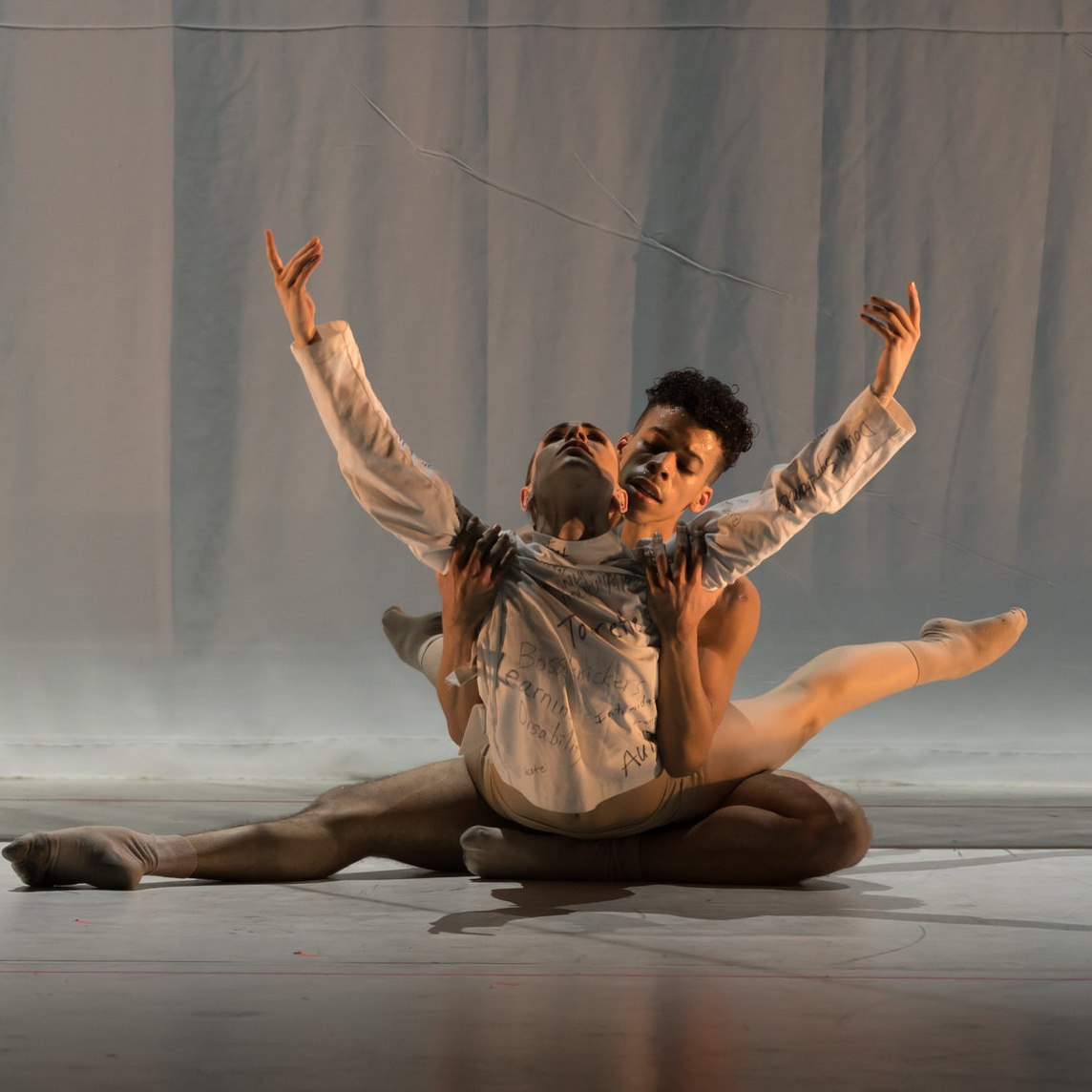 Eisenhower Dance Detroit Presents A Soldier's Tale